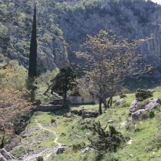 Laaksossa