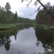 Muorravaarakanjoki on rauhallinen...