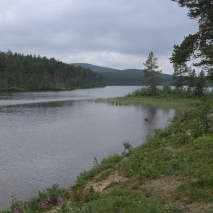 Suomujoki